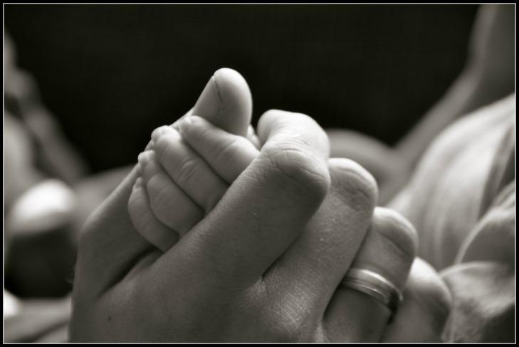 Adult, Child Hands, FRAMED